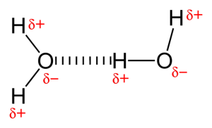 640px-Hydrogen-bonding-in-water-2D